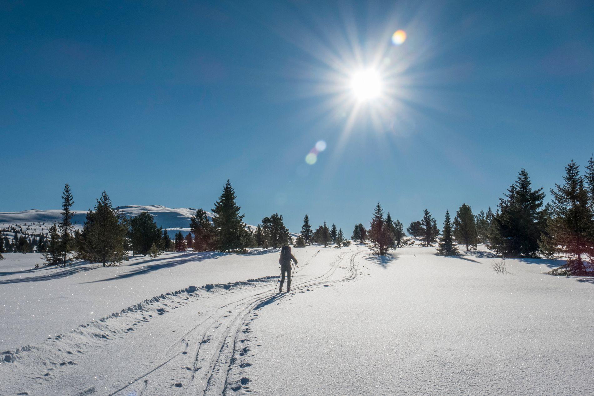 SOLSTEIK: Påsken i Sør-Norge blir varm og fin, ifølge meteorologen. Det kan bli opp mot 20 grader på Sør- og Østlandet. I Nord-Norge blir det imidlertid mer regntungt.